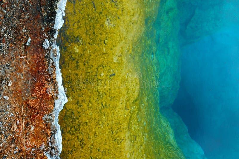 Geotermiczny krajobraz w Yellowstone parku narodowym zdjęcie royalty free