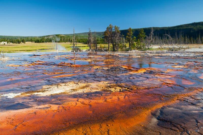 Geotermiczny pole w Yellowstone parku narodowym zdjęcie royalty free
