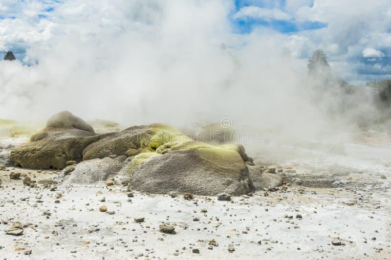 Geotermiczny teren przy Whakarewarewa obraz stock