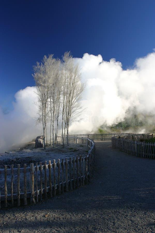Geotermisk By Arkivfoton