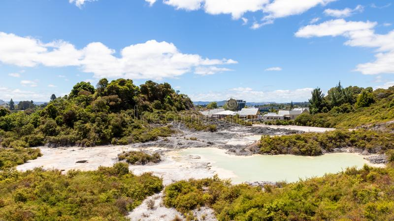 geotermisk aktivitet på Whakarewarewa Rotorua Nya Zeeland arkivfoto