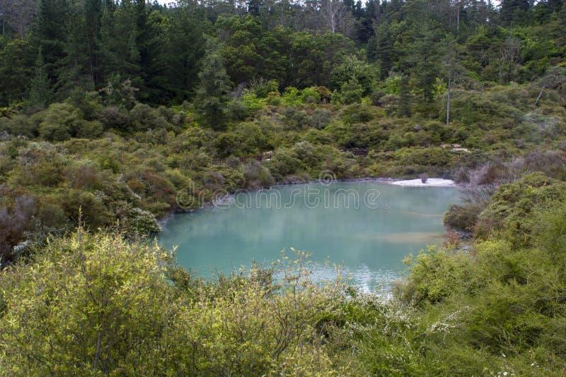 Geotermisk blå sjö med ånga, Whakarewarewa by, Nya Zeeland royaltyfria foton