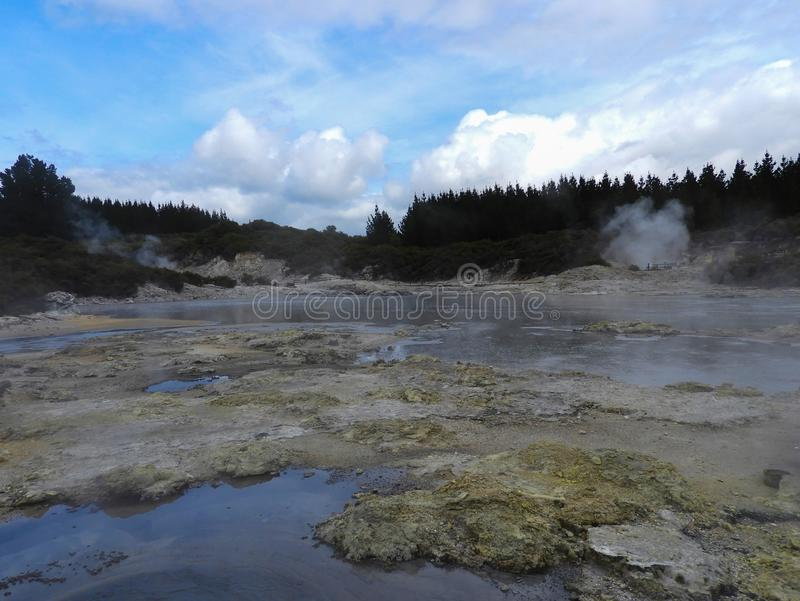 Geothermal Park with steaming pools. Steaming pools in the Geothermal Park Hell`s Gate in New Zealand royalty free stock photo