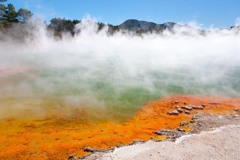 Geothermal pool. Near Rotorua, North Island, New Zealand stock photos