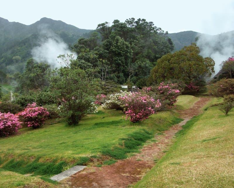 Geothermic Tätigkeit bei den Azoren stockbild