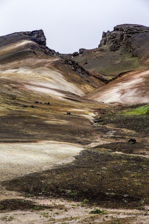 Geothermisch landschap royalty-vrije stock afbeeldingen
