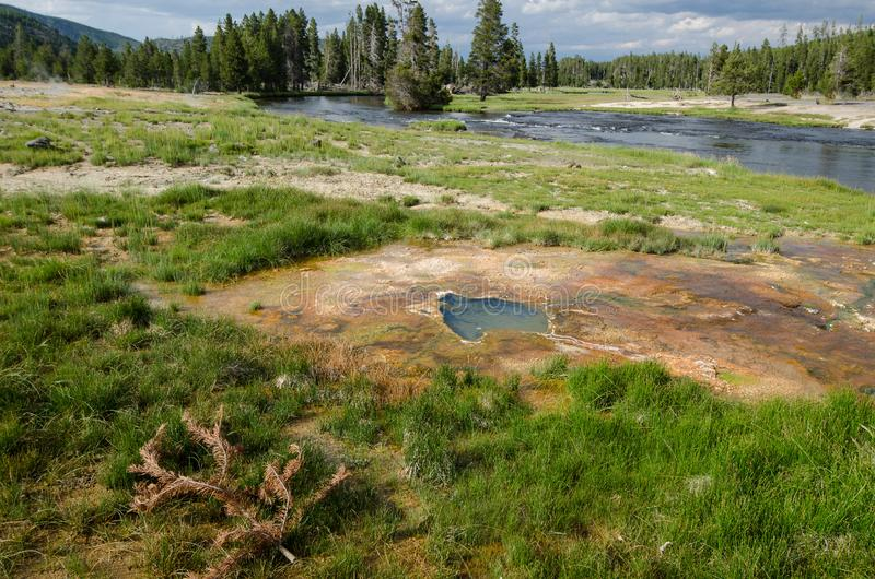 Geothermische heiße Quellen gelegen in einem schönen grasartigen Sumpfinnere von Yellowstone Nationalpark lizenzfreie stockbilder