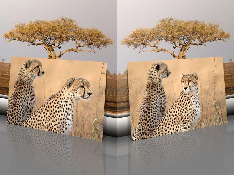 Gepard Acinonyx jubatus Porträts mit afrikanischer Landschaft lizenzfreies stockbild
