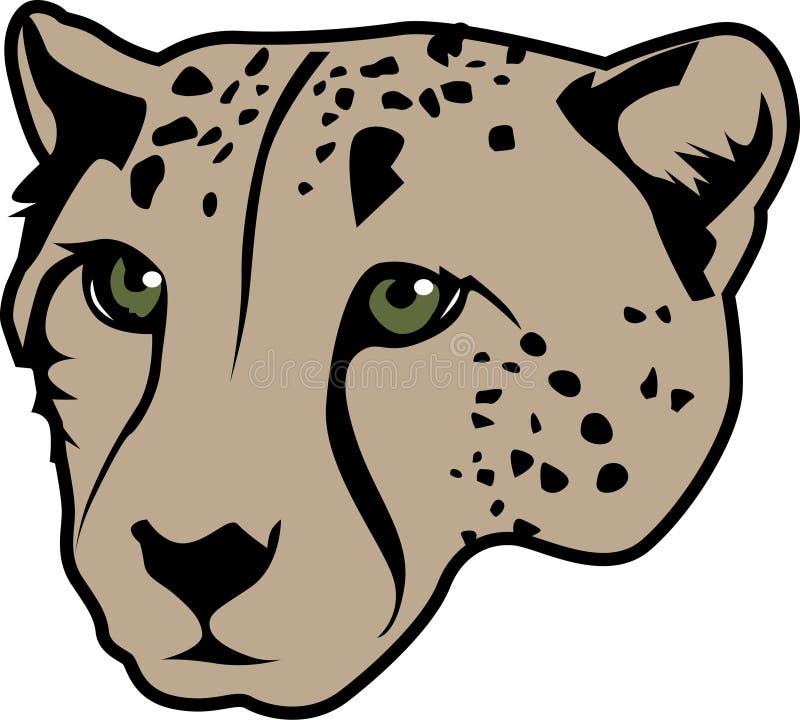 Gepardhuvud  arkivbild