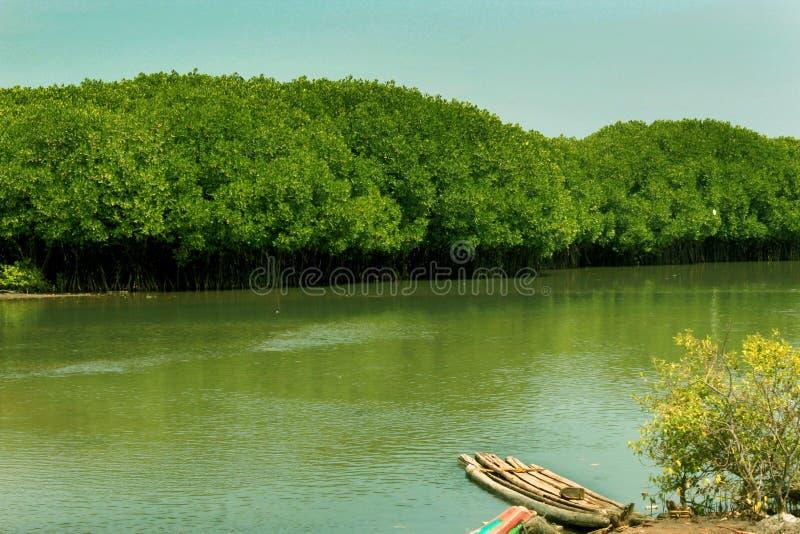 Geparkeerde traditionele houten boot en catamaran op een achterwaterrivier dichtbij het karaikal strand stock foto's