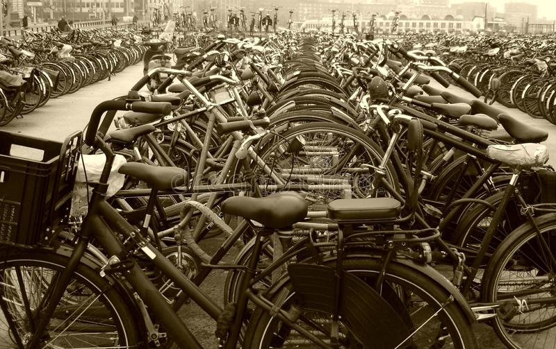 Geparkte Fahrräder lizenzfreies stockbild