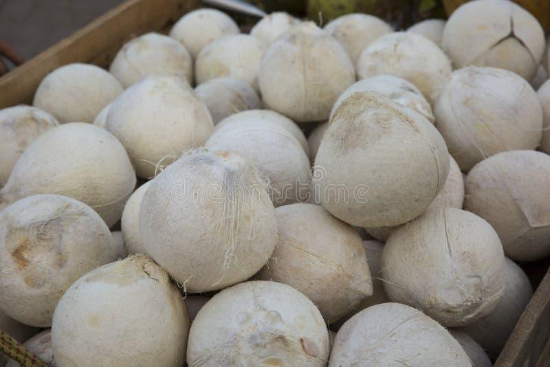Gepelde kokosnoten royalty-vrije stock afbeeldingen