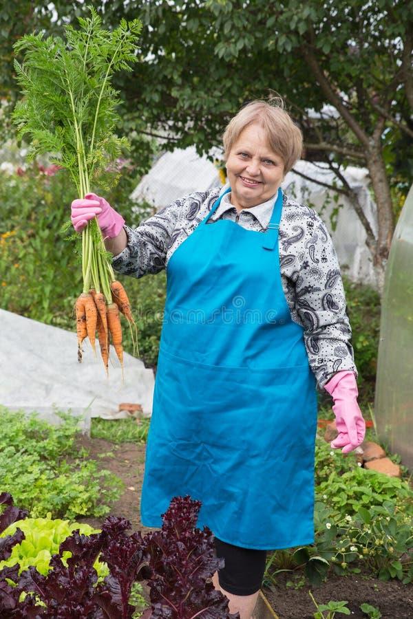 Gepensioneerdevrouw met wortel bij moestuin royalty-vrije stock foto's