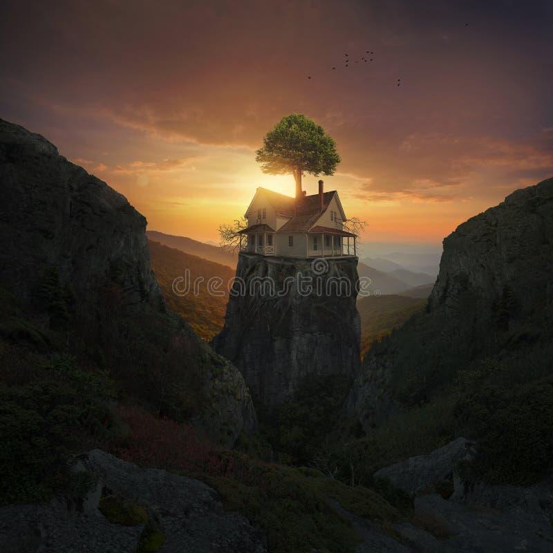Gepflanzt auf dem Felsen lizenzfreie stockbilder
