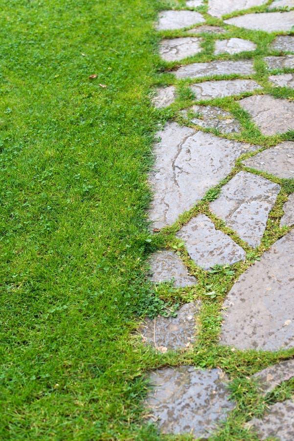 Gepflasterter Garten stockbild