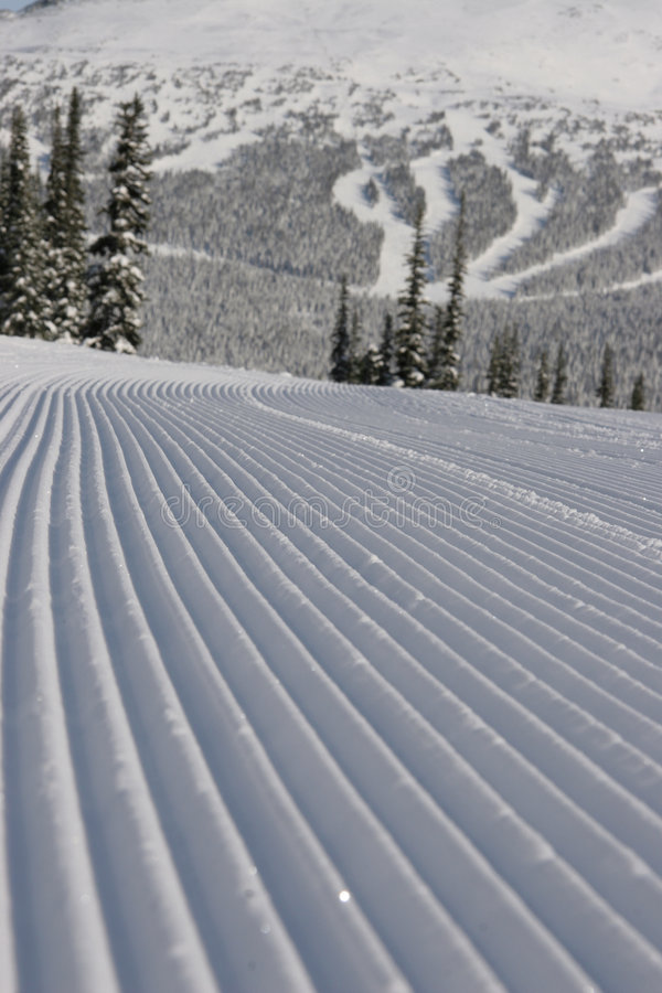 Gepflegter Ski-Lack-Läufer lizenzfreie stockbilder