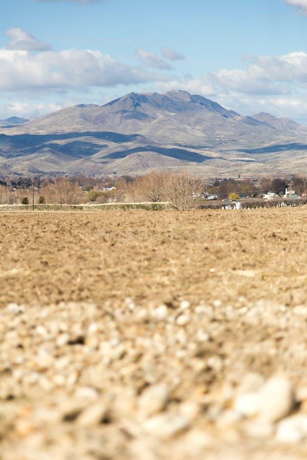 Gepflogene Felder vor Bergen lizenzfreie stockfotografie