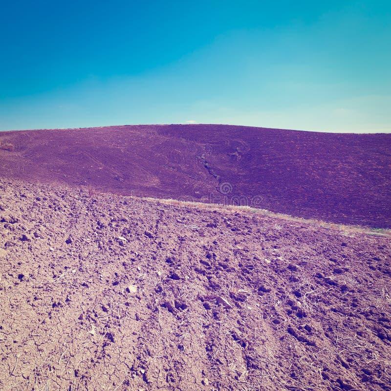 Gepflogene Hügel lizenzfreie stockbilder