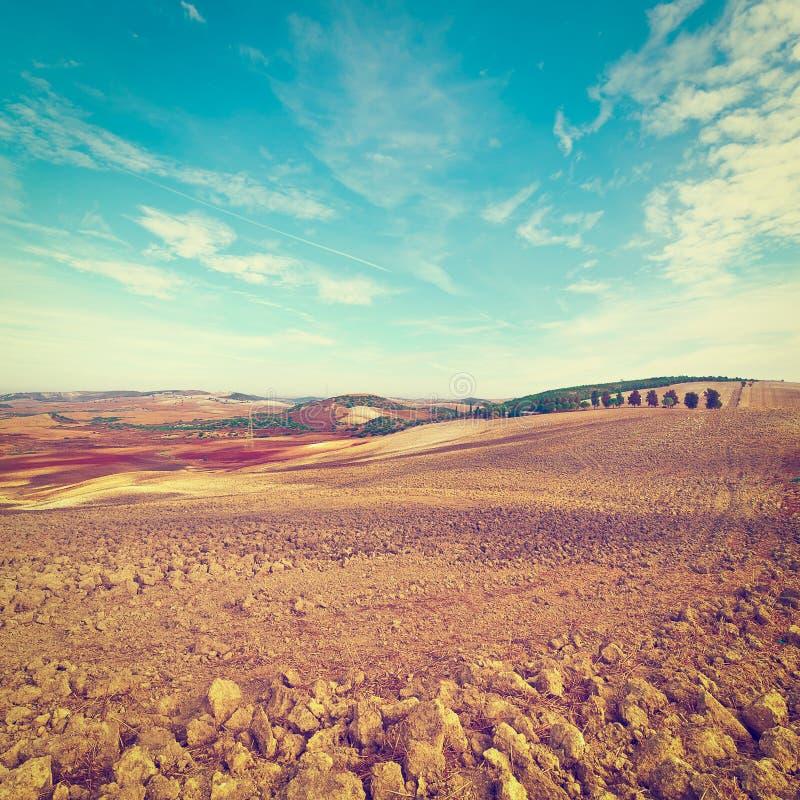 Gepflogene Hügel lizenzfreie stockfotos
