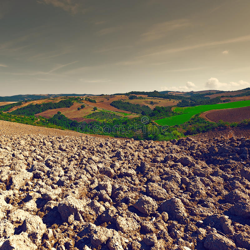 Gepflogene Hügel lizenzfreie stockfotografie