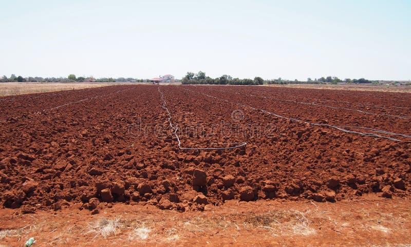 Gepflogenes Bauernhoffeld mit rotem Boden in Zypern stockbild