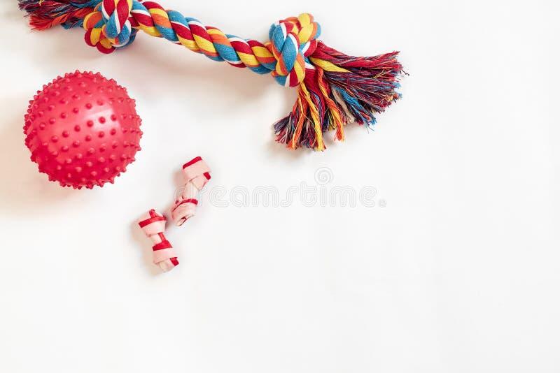 Geplaatst hondspeelgoed: kleurrijk katoenen hondstuk speelgoed en roze bal op een witte achtergrond royalty-vrije stock fotografie