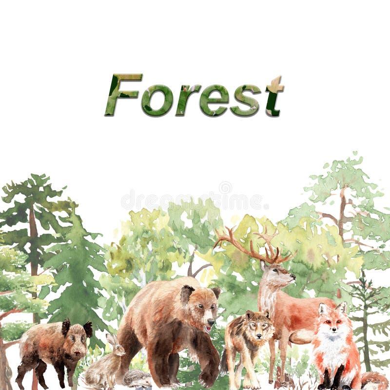 Geplaatst waterverfbos: bomen, struiken, beer, hazen, beer, vos, wolf, herten, eik, stomp, sparren stock illustratie