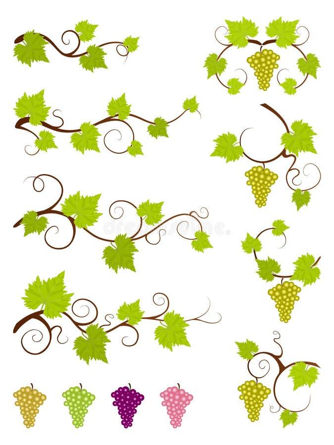 Geplaatste de elementen van het wijnstokkenontwerp. royalty-vrije illustratie