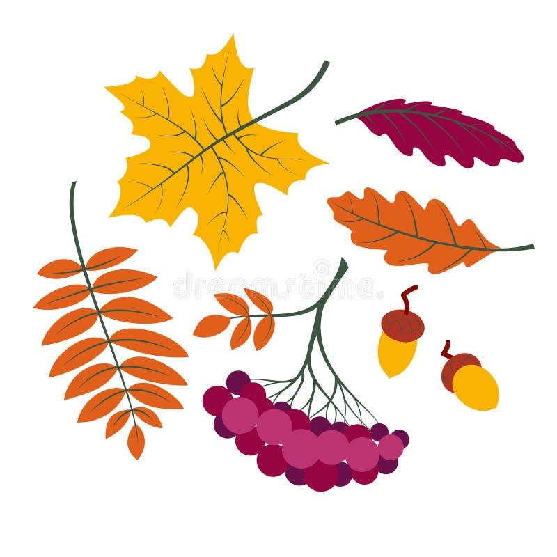 Geplaatste de herfstbladeren, kleurrijke inzamelingssilhouetten van boomverlof royalty-vrije illustratie