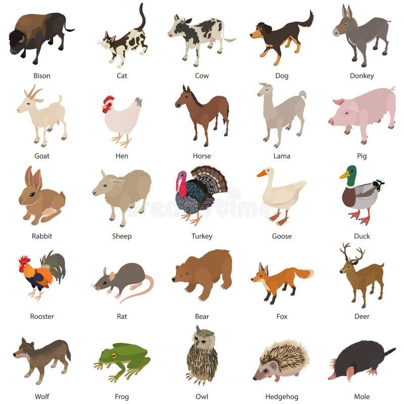 Geplaatste de pictogrammen van de diereninzameling, isometrische stijl stock illustratie
