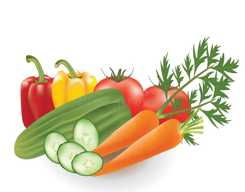 Geplaatste groenten, peper, tomaat, komkommer en wortel royalty-vrije illustratie