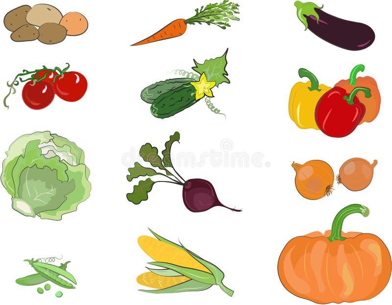 Geplaatste groentenbeelden (vector) royalty-vrije stock foto
