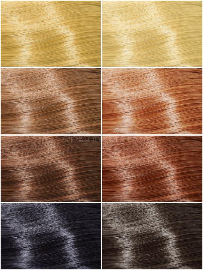 Geplaatste haarkleuren, tinten royalty-vrije stock afbeelding