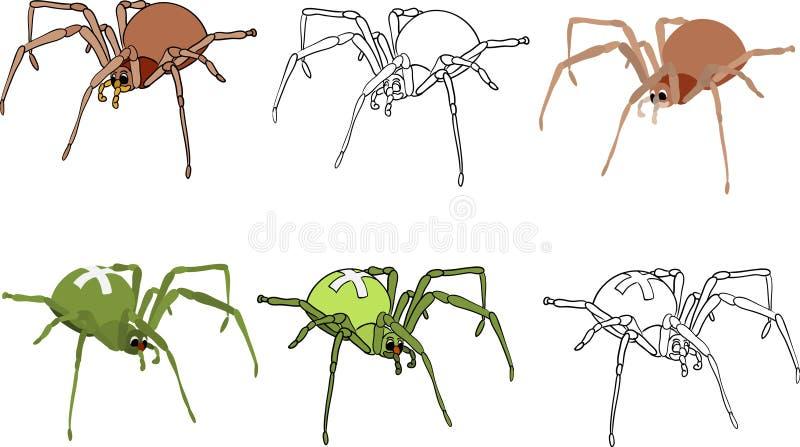 Geplaatste spinnen royalty-vrije illustratie