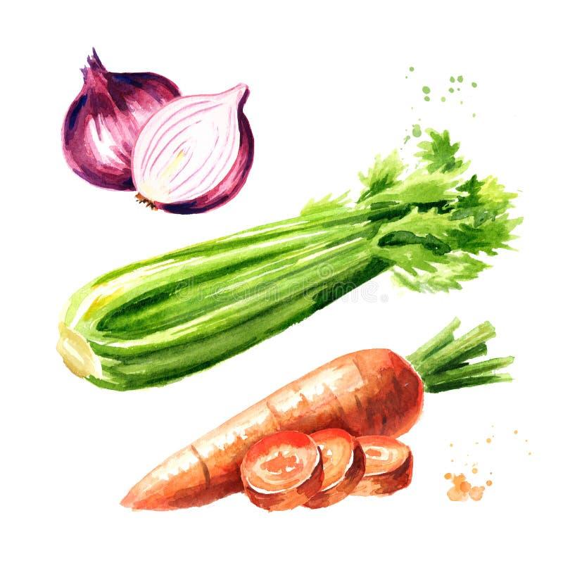 Geplaatste uien, selderie en wortelen Soffritto of Mirepoix Waterverfhand getrokken die illustratie op witte achtergrond wordt ge vector illustratie