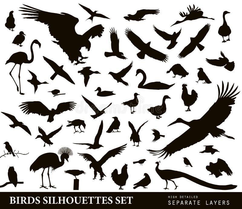 Geplaatste vogels vector illustratie