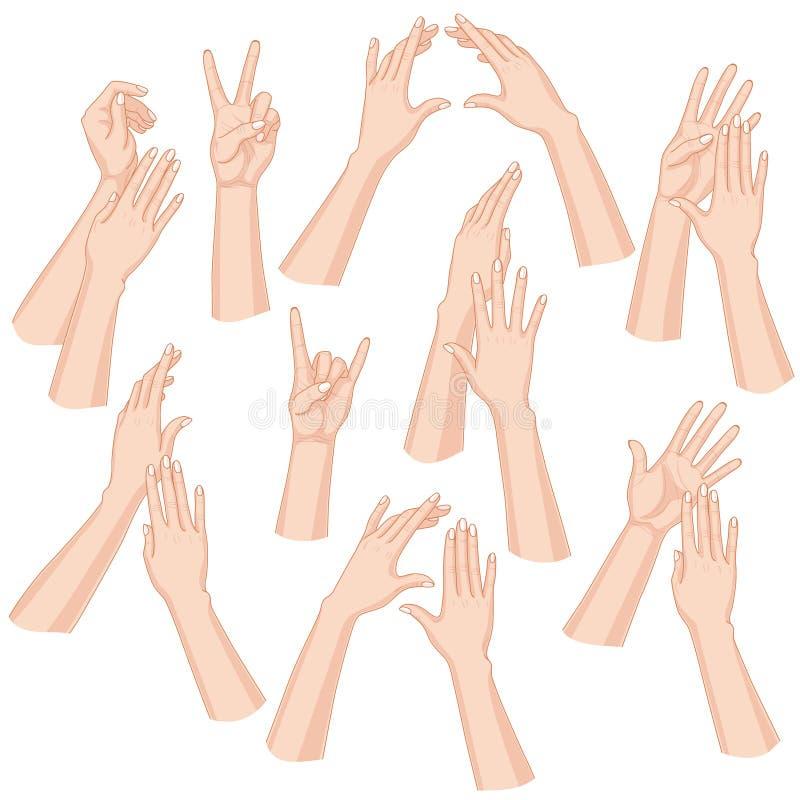 Geplaatste vrouwenhanden stock illustratie