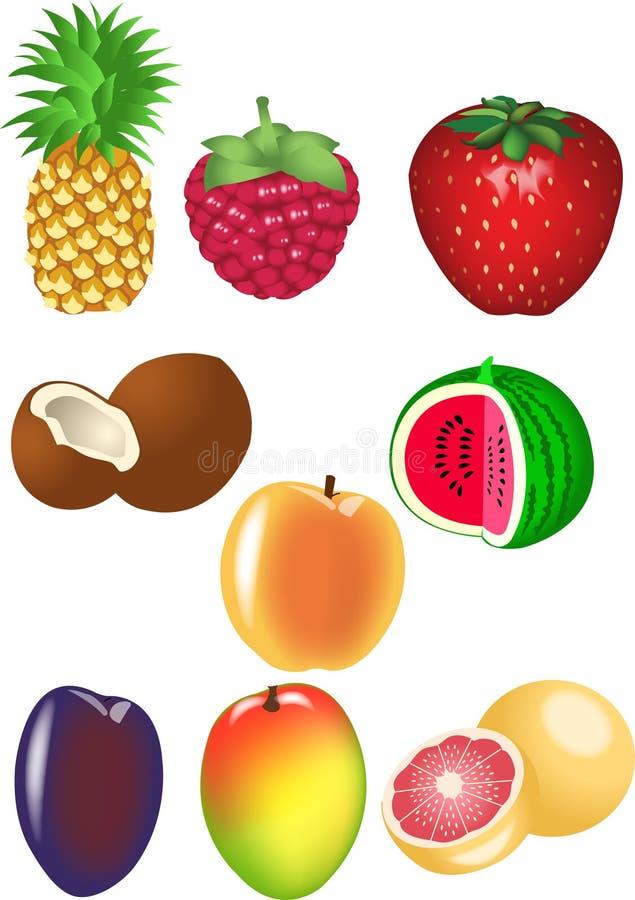 Geplaatste vruchten royalty-vrije illustratie