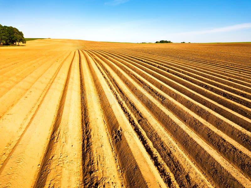 Geploegd die gebied op het planten van gewassen in de lente wordt voorbereid Horizontale mening in perspectief Landbouw landschap stock fotografie