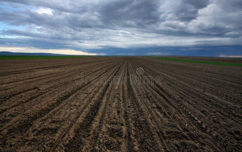 Download Geploegde grond stock foto. Afbeelding bestaande uit wolk - 29505576