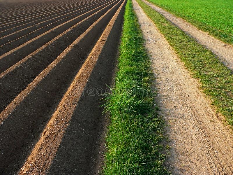 Geploegde grond naast manier, landbouwachtergrond royalty-vrije stock afbeelding