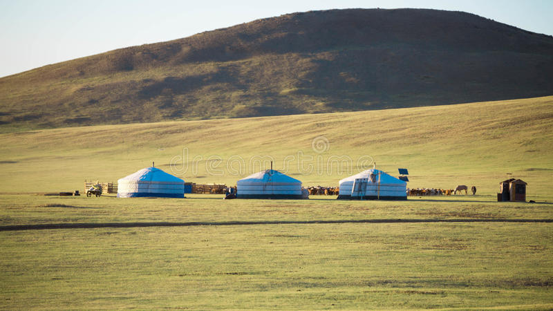 Ger. Mongolian house is call GER on grassland with sunshine stock photos