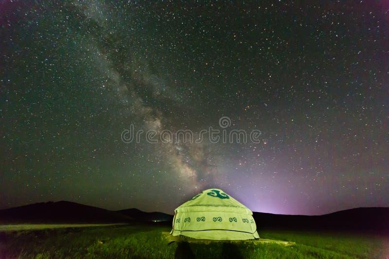 Ger unter dem sternenklaren Himmel des Sommers lizenzfreies stockfoto