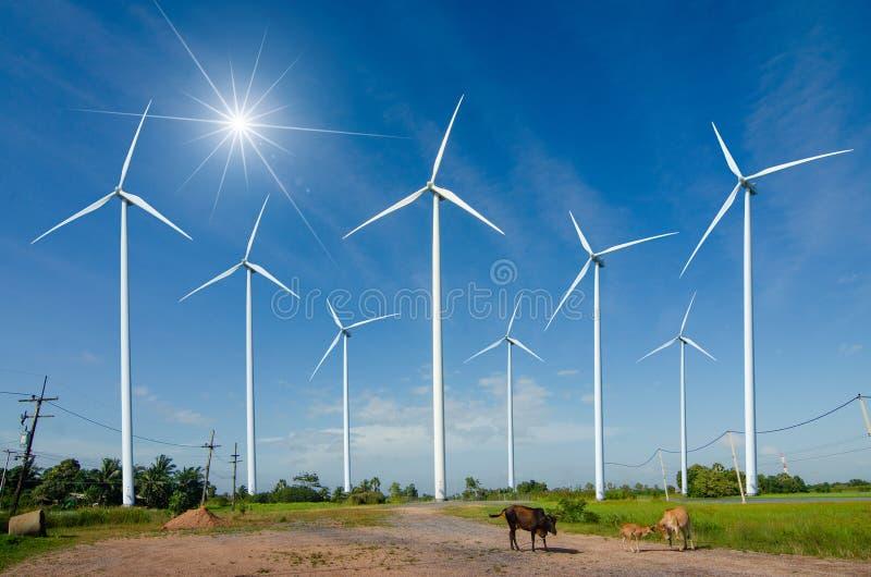 Geração ecológica verde da energia do poder da energia da turbina eólica Céu bonito Hua Sai District Nakhon Si Thamma do campo do imagens de stock royalty free