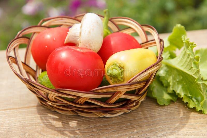 Gerade ausgewählte Tomaten und gelber grüner Pfeffer in einem Weidenkorb w stockbilder