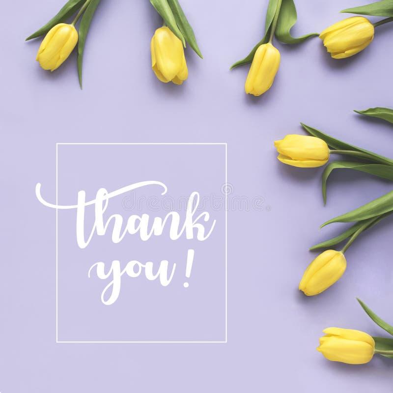 Gerade ein geregnet ` Danken Ihnen! ` geschrieben in kalligraphische Art Das Feld, das von der gelben Tulpe gemacht wird, blüht a stock abbildung