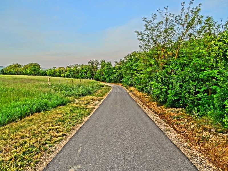 Gerade Straße nahe Wald und Felder in HDR lizenzfreie stockfotos