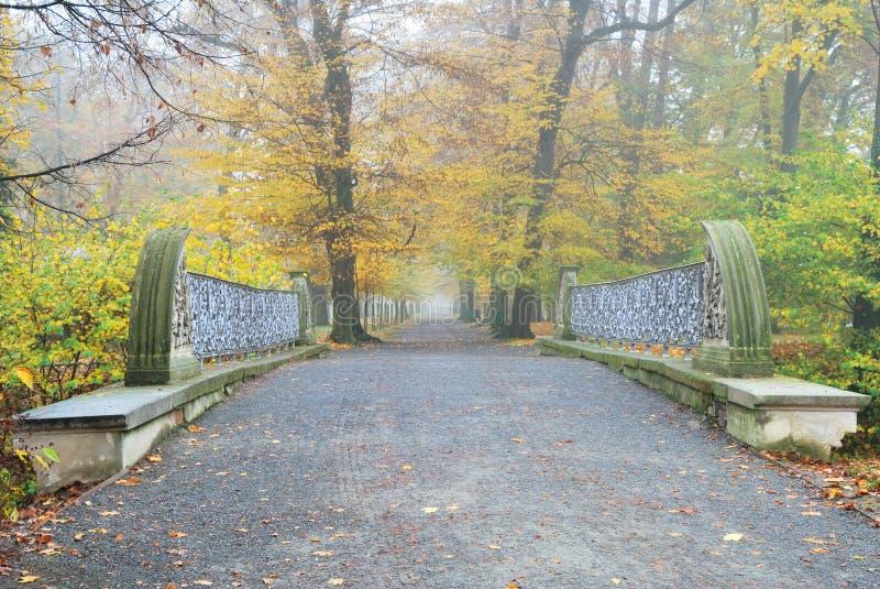 Gerader und langer Forest Park Fußweg mit Brücke stockfoto