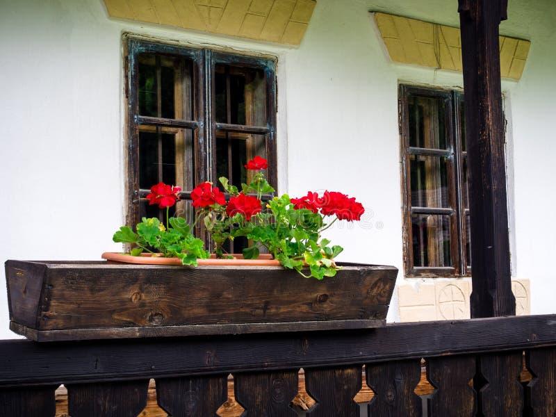 Gerani in un vaso di fiore di legno, portico rumeno rurale tradizionale della casa fotografia stock libera da diritti