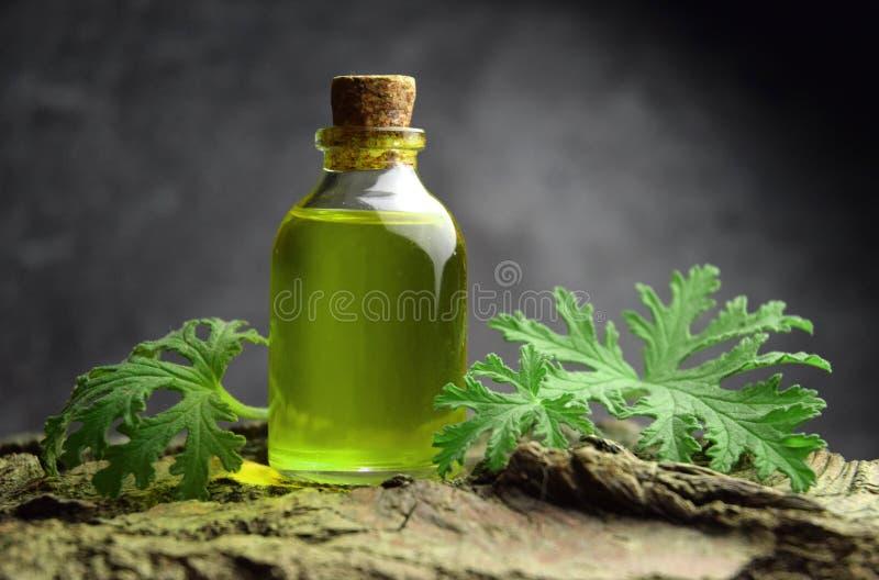 Geranium oil aromatherapy bio organic SPA royalty free stock photos